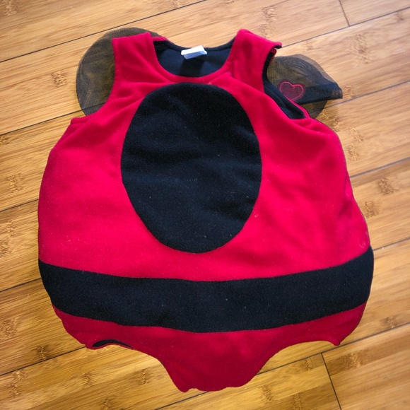 The Children's Place Other - The children's place lady bug costume